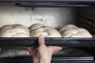 Lievitazione in forno, per quali impasti?